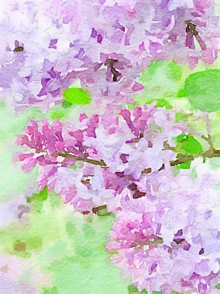 Lilac Watercolors for the Master (and free prints for you ...